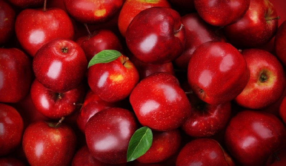 apples are a healthy snack that won't blow your diet